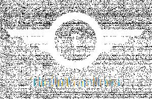 theonlinenews
